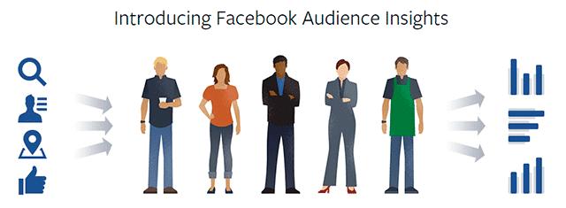 audience insights online digital marketing tools