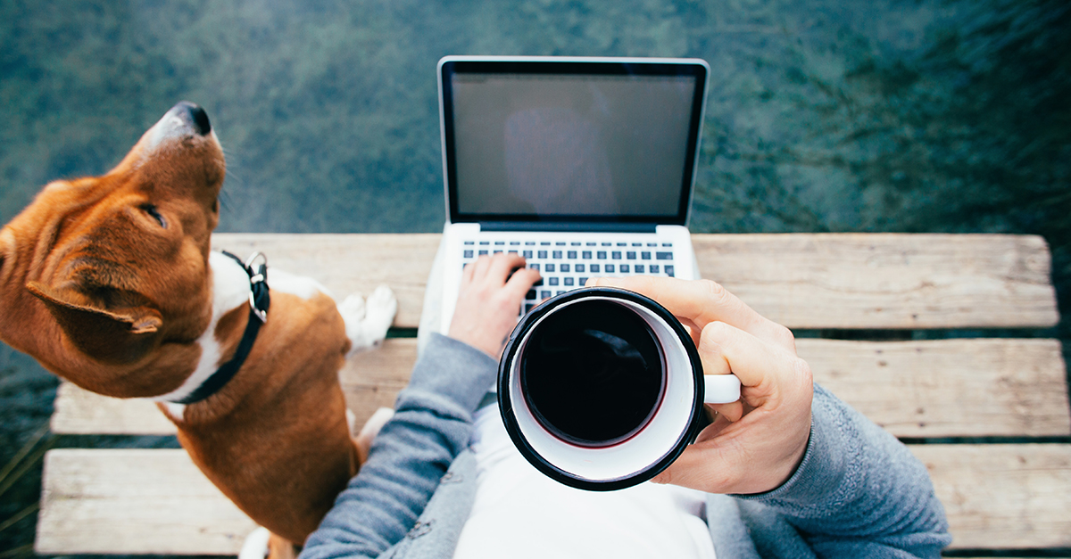 What Are The Best Work From Home Jobs? 12 Professions Plus The Best Ideas And Tips
